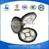 5*6mm2-High quality China manufacturer Aluminum 5 Core XLPE Insulated PVC Sheathed Power Cable-YJLV