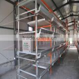 Baby Chicken Cage Factory for Poultry Farm