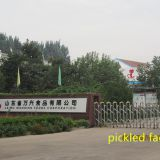 Qingdao Manhang International Trade Co.,Ltd