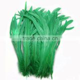 wholesale green dyed rooster tail feathers for yiwu feather