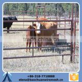 luxury style of horse fence and horse farm fence