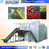 Cheap and High Quality IQF Machine For Food Blast Freezer
