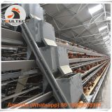 Haiti Poultry Farm Automatic Egg Chicken Cage & Layer Cage & Hen Cage with 90-200 birds in Chicken Shed