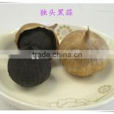 China black garlic for sale
