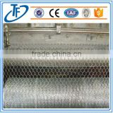 PVC Coated Iron wire Double strands twisted Hexagonal Netting/Chicken wire/Galvanized Chicken Wire Mesh