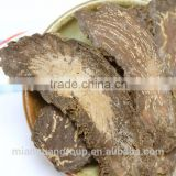 Cistanche Tubulosa extract powder 20:1