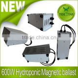 Magnetic ballast 250W 400W 600W for Euro Hps MH lamp
