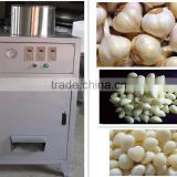 High quality garlic peeling machine, industrial garlic peeling machine, garlic peeler machine