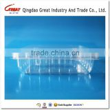 On Alibaba Sale Clamshell Blister Plastic packaging container for berry 1000gram