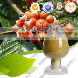 Guarana Extract Powder 20% Guarana Seed Extract