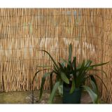 Bamboo Style Rolled Woven Reed Fence for garden decoration
