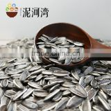 Sunflower seeds for American type 5009 with best quality