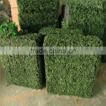 2017 hot sale UV Anti and fireproof plastic hedge fence decoration