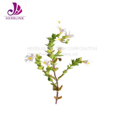 High Quality Free Sample Eyebright Extract