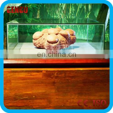 Museum High Simulation Dinosaur Eggs Fossils For Sale