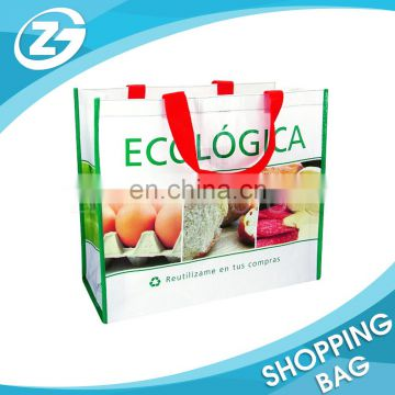 Advertising Eco-friendly Reusable Cheap Bag PP Woven Knitted