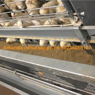 Tajikistan Chicken Farm H Type Automatic Chicks Cage & Pullet Cage in Brooding Room with Poultry Climate Control