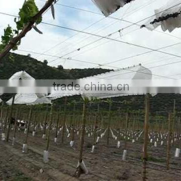 1.75m x12m chile cherry farm orchard roof rain cover with 5%uv resistance