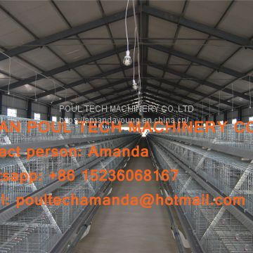 Qatar Poultry Farming A Type Battery Broiler Cage Chicken