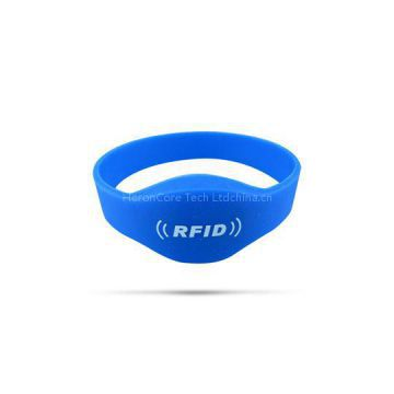 Oval-Head Closed Loop Silicone Wristband