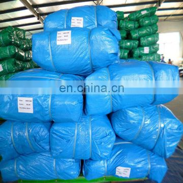 65gsm sky blue pe tarpaulin for Romania market,light blue tarpaulin sheet with bale package