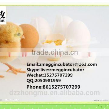 1_110_46345_800_484 zm 1056duck egg setter duck egg incubator automatic egg incubator