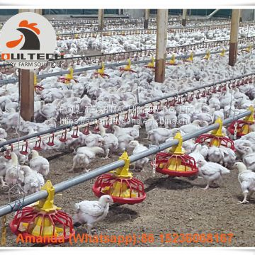 Mexico Chicken House Poultry Farm Equipment Broiler Floor Raising System &  Chicken Deep Litter System with Automatic Drinking & Feeding Pan System in