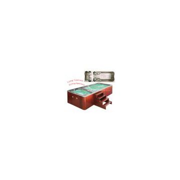 Swimming pool with hot tub SR820