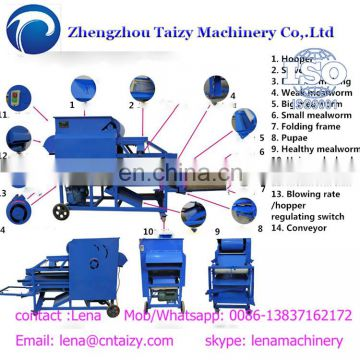 Yellow mealworms separator tenebrio molitor with factory price