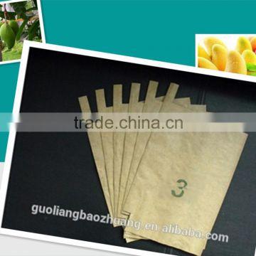 Wholesale Bangladesh High Quality Brown White Cheap Fruit Mango
