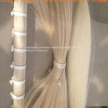 white  horse tail hair