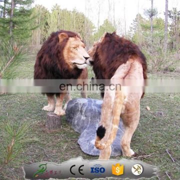 KAWAH Life Size Realistic Animatronic Artificial lion statues for sale