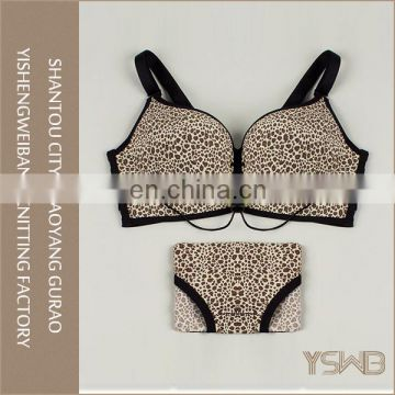Hot sales new design leopard sexy ladies cotton gold color korea bra set