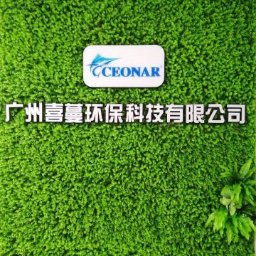 Guangzhou CEONAR Environment Protection Technology Co.,Ltd