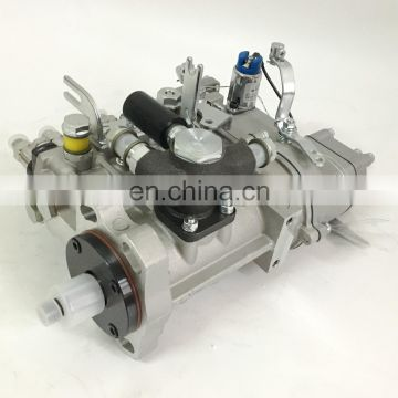 BHF4PM095021 Yangchai YZ4102ZLQ Diesel Engine Parts Wuxi Weifu Fuel Injection Pump 4PM1107A
