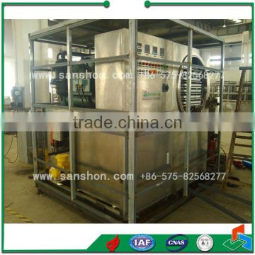 FDG Fruit and Vegetable, Apple Vacuum Freeze Drying Lyophilizer Price