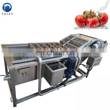 lemon grapefruit jujube grape blueberry cleaning machine fruit and vegetable cleaning machine