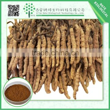 Factory supply competitive price Cordyceps Sinensis Extract 40% Polysaccharide with high quality