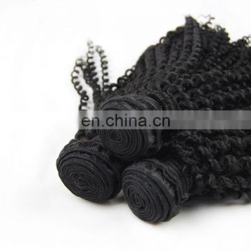 100% indian human virgin 9A grade hair weaving in kinky curl cuticle aligned hair no chemical process