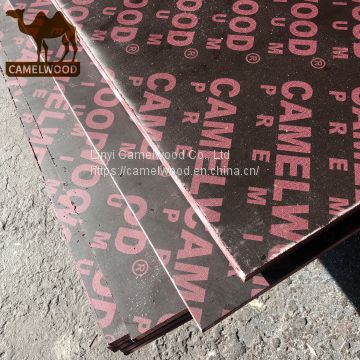 Hot sales high quality 18mm film faced plywood