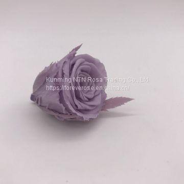 High Quality Timeless Preserved Flower  Rose to Make Gorgeous Flower Gifts