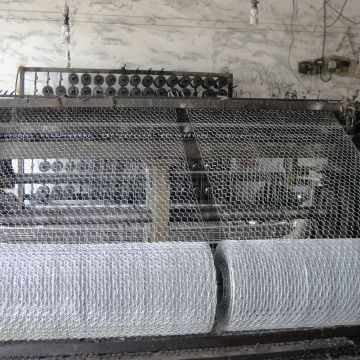 Chicken Wire Netting Green Pvc Coated Chicken Hot Dipped Galvanized