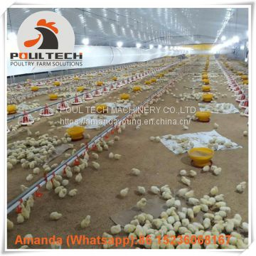Qatar Layer Farm & Poultry Farm Equipment Broiler Floor Raising System & Chicken Deep Litter System with Automatic Drinking & Feeding Pan System in Chicken Coop