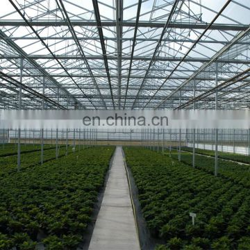 hydroponics systems climate control greenhouse