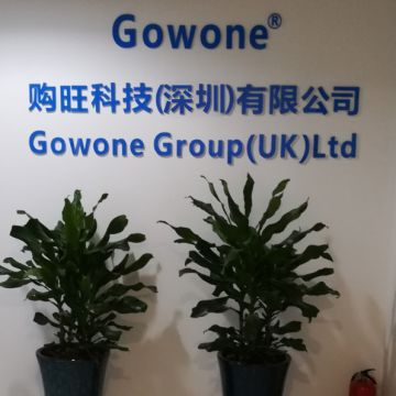Gowone technology (shenzhen) co.Ltd