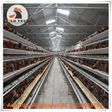 Brazil Poultry Farm Equipment A Type Automatic Laying Hen Cage & Egg Hen Coop & Chicken Coop with 90-200 birds in Chicken Coop
