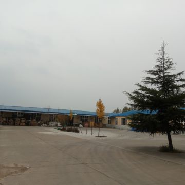 Qingdao Senlongda Wood Co., Ltd