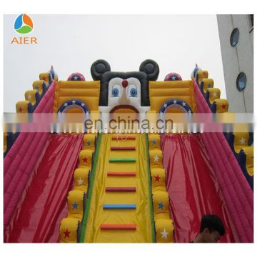Recreation Facility, Mickey Mouse Theme Giant Inflatables Slides, Recreation