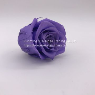 Handmade Immortal Flowers Preserved Flower Rose, Never Withered Roses