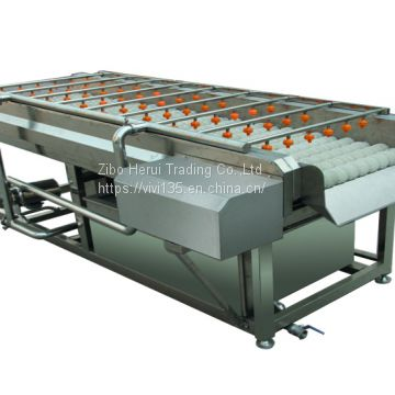 Brush type fruit and vegetable washing machine